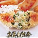 生姜生餃子 国産生姜をたっぷり使用 この時期にピッタリの商品です♪ 化学調味料不使用にんにくなし 国産の野菜 鶏肉 …