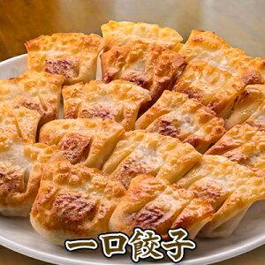 一口餃子 餃子 ぎょうざ ギョウザ 国産の野菜、豚肉を使用 野菜餃子 にんにく餃子 業務用 餃子工房RON