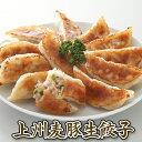 上州麦豚生餃子 餃子工房RON 工場直売店人気No.1餃子 臭みの無いあっさりとした味が特徴の上州麦豚をふんだんに使用 …