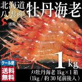 北海道産鮭ボタンエビ(メス)八雲町長谷川水産ミノリ商事