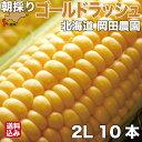 【7月下旬発送開始】 とうもろこし 北海道産 ゴールドラッシュ 2Lサイズ × 10本 朝採り 産地直送 スイートコーン と…