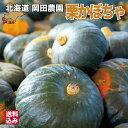 かぼちゃ 北海道 ブラックのジョー 4~6玉 (1.6~2.5kg混合) 栗かぼちゃ カボチャ 農園直送 七飯町 岡田農園 送料無料