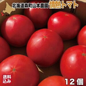 期間限定 北海道産 トマト 12個入 とっても甘い 北海道 森町 濁川 山本農園 情熱トマト 産地直送 農家直送 送料無料