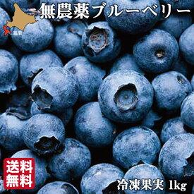 無農薬 冷凍 ブルーベリー 1kg 4種ブレンド 国産 北海道 北斗 自然栽培 原料 送料無料 産地直送 ハウレット農園