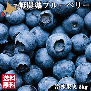 無農薬 冷凍 ブルーベリー 3kg (1kg×3袋) 国産 北海道 北斗 自然栽培 原料 送料無料 産地直送 ハウレット農園