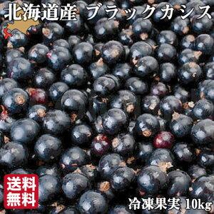 無農薬 冷凍 ブラックカシス 10kg (1kg×10袋)  国産 北海道 北斗 自然栽培 原料 送料無料 産地直送 ハウレット農園