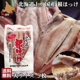 ほっけ 北海道 開き 大サイズ 5尾 魚 生冷凍 通販 国産 上ノ国 根ほっけ ホッケ 脂 肉厚 干物ではなく生を急速冷凍 送料無料