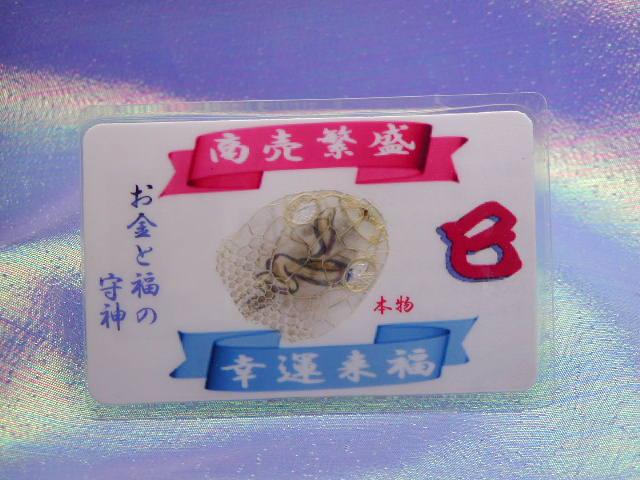 金運アップ・開運財布専門店 「財布屋」 日本の財布職人が作る開運の財布 財布に入れると開運する蛇の抜け殻