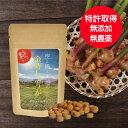金時しょうが 粒 120粒 【送料無料】100%国産・無添加・無農薬栽培!国産の金時生姜の種を無農薬栽培し、粉末加工して…