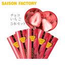 セゾンファクトリー チョコいちご5本セット《チョコいちご・バレンタインデー・プレゼント・ギフト・チョコレート・…