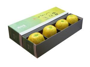 柚子じょうよう4入【和菓子彩雲堂】