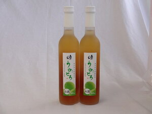 【最大2000円オフクーポン16日1:59迄】完熟梅の味わいと日本酒のうまみをたっぷりの梅リキュール 500ml×2本