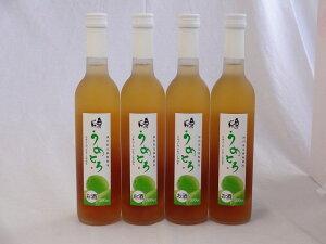 完熟梅の味わいと日本酒のうまみをたっぷりの梅リキュール うめとろ 500ml×4本