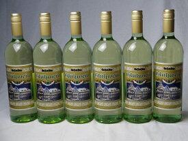 ドイツホット白ワイン7本セット ゲートロイトハウス グリューワイン 1000ml×7本 バレンタイン