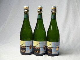 スペインスパークリング白ワイン4本セット モンサラ セミ セコ(やや甘口) 750ml×4本