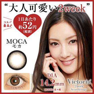 維多利亞2week MOCA-5.00--8.00