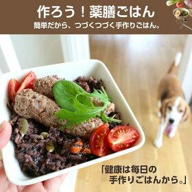 犬の国産無添加ドッグフードで愛犬の健康や長生きをサポート