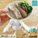 【5%クーポン25日限定】ドッグフード アレルギー 無添加 国産 豚 ソーセージ 1袋 犬 おやつ グルテンフリー ウェット…