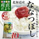 送料無料 平成28年産 <特A> 北海道産 ななつぼし 10キロ お米 北海道米