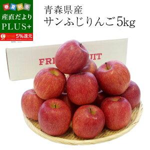 青森県産 サンふじりんご  特秀品 Lサイズ 5キロ (16玉から20玉) 送料無料 ふじりんご 林檎 冬ギフト