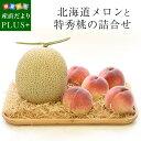【予約商品】送料無料 北海道メロンと特秀桃 詰合せ 化粧箱入り フルーツセット  めろん もも 夏ギフト2019 …