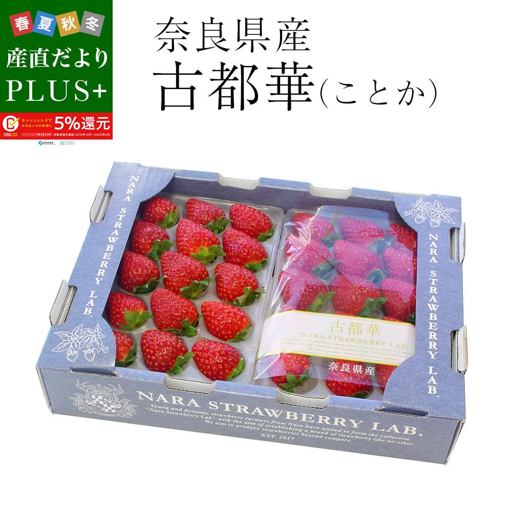 送料無料 奈良県産 古都華 秀品 (11から15粒) 270g×2P 化粧箱入り いちご 苺