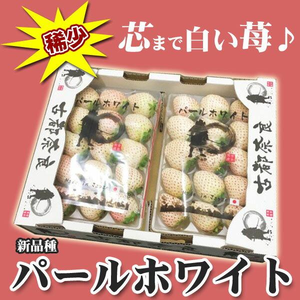 ご予約 奈良県産 白いちご 白苺 パールホワイト 2パック