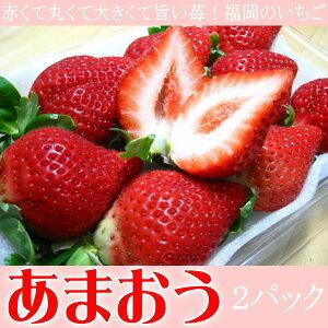 福岡県産 いちご イチゴ 苺 あまおう 2パック入り