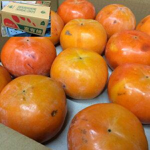 送料無料 ご予約 訳あり 富有柿 ふゆがき フユガキ 7kg サイズ不定 かき カキ