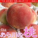 お中元 和歌山 桃山町 あら川の桃 もも 4kg 化粧箱 送料無料 ご予約