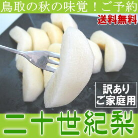 送料無料 もったいない 鳥取県産 二十世紀梨 20世紀梨 5kg 訳ありご家庭用 ご予約