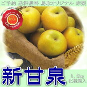 ご予約送料無料鳥取オリジナル赤梨新甘泉しんかんせん2.5kg化粧箱入