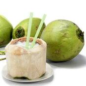 ヤシの実やしの実椰子の実1玉2.5kgUP