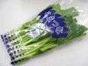 日常の一般野菜 小松菜 こまつ菜 1袋