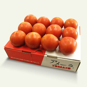 静岡県産 高糖度 フルーツトマト アメーラ 約1kg