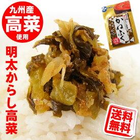 かねふく 明太 からし高菜 100g 送料無料 (メール便/同梱・代引不可)