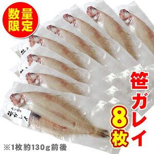 山口県産 笹カレイ 一夜干し 8枚 送料無料 柳かれい