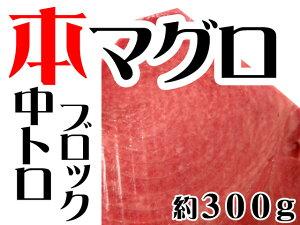 ≪期間限定特売≫本マグロ(クロマグロ)中トロ約300gブロック(蓄養マグロ)