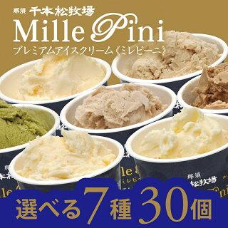 ギフトにも!プレミアムアイスクリーム〈ミレピーニ〉選べる30個セットN-6760
