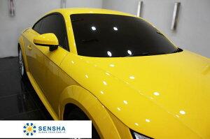 洗車の王国アイアンカット鉄粉クリーナー自動車