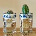 SaiSui BLUE PLANTS 【全2種】 水栽培 フラワーベース 花瓶 おしゃれ ガラス 陶器 シンプル