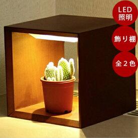 LED植物シェルフ Akarina09/灯菜/アカリーナ 型番:MAI09 インドアグリーン インテリア シンプル 間接照明 ライト 多肉植物 サボテン おしゃれ ギフト プレゼント