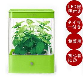 LED 水耕栽培 キット ユーイング Green Farm Cube (グリーンファーム キューブ) グリーン UH-CB01G1 水耕栽培器 コンパクト ギフト プレゼント 水耕栽培キット