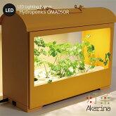 Akarina05(オレンジ)LED水耕栽培器