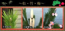 【早期特典・ポイント5倍】【お正月寄せ植え】【送料無料】【天然竹門松一対(2個)高さ:120cm】
