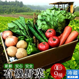日本の有機野菜セット 旬のおまかせ9種類 全国ご当地生産者のこだわり有機栽培 ベジタブル スムージー 野菜材料【送料無料】[父の日 ギフト]