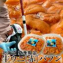 うに 塩水漬け 生うに[特選]100g×2個 北海道産 蝦夷バフンウニ 贅沢 生ウニ【送料無料】