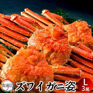 ずわいがに姿 (3尾入)1.5kg ボイル かに ずわい蟹 ズワイガニ 姿【送料無料】