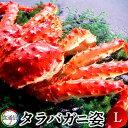 たらばがに ボイルたらばがに姿 1尾(1.5〜1.8kg)L タラバガニ 本たらば 蟹姿