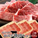 牛肉 前沢牛 焼肉 食べ比べセット[赤身300g、霜降りロース300g]特選 岩手県産 黒毛和牛